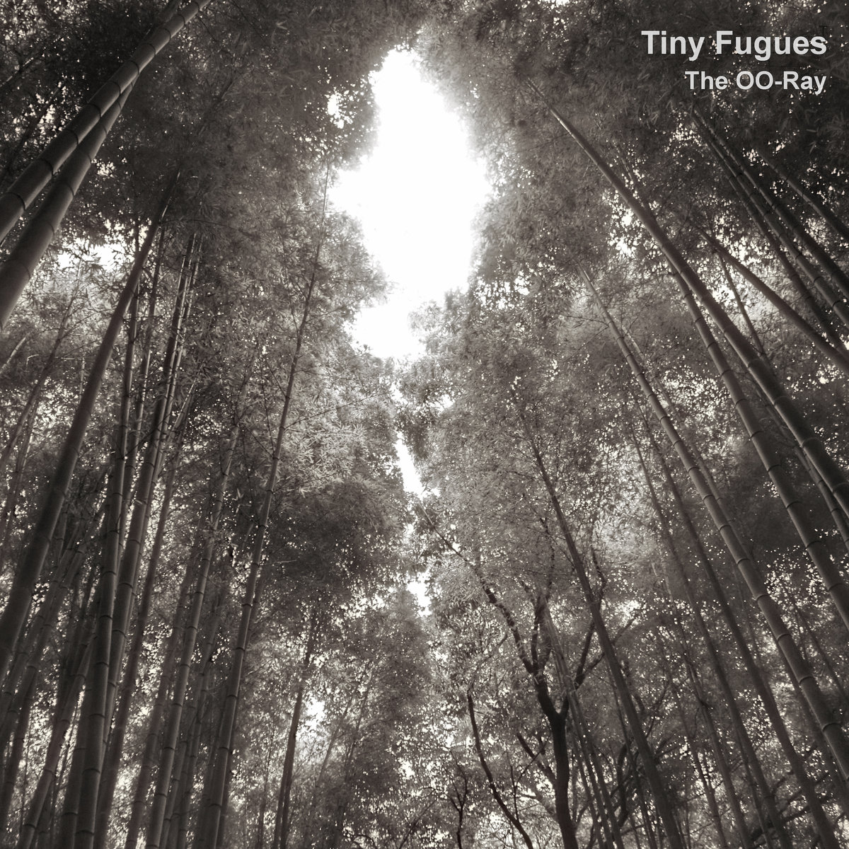 Tiny Fugues out today on Audiobulb